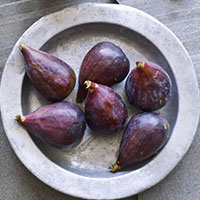 figs-plate